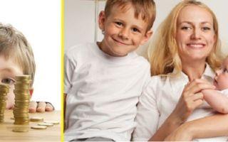 На какие выплаты может рассчитывать многодетная семья