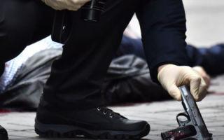 Статья за убийство — наказание за причинение вреда по ст 105 ук