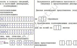 Налоговая декларация по форме 3-НДФЛ: заполнение и сроки подачи