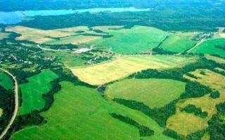 Особенности пользования наделом по праву пожизненного наследуемого владения