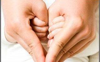 Какие права и обязанности родителей приняты законом