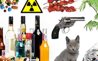 Запрещенные товары с алиэкспресс в россии — что нельзя заказывать ?