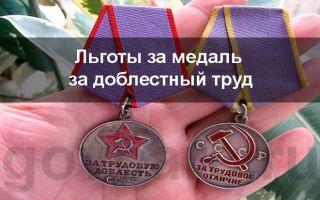 Какие льготы полагаются лицам, награжденным медалью «за трудовую доблесть»