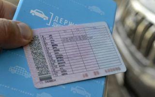 Водительские права: внешний вид и порядок получения в 2020 году