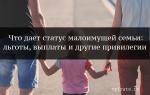 Пособие малоимущим семья в 2020 году в санкт-петербурге — порядок получения