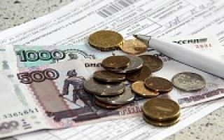 Субсидия в 2020 году: разновидности и правила назначения