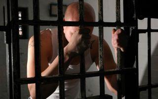 Преступления небольшой тяжести на примерах