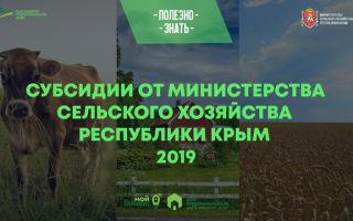 Субсидии для сельского хозяйства в 2020 году на развитие — как получить