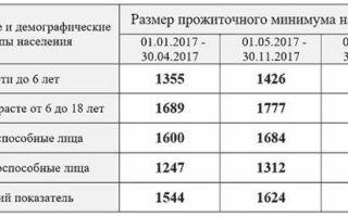 Размер социальной пенсии по старости в России — расчеты
