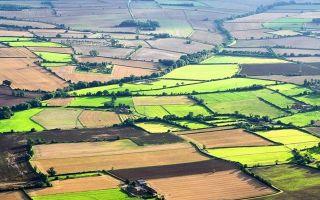 Какие поправки были внесены в закон о земельных участках