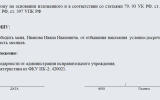 Освобождение по удо: документы, образец ходатайства, процедура