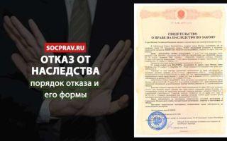 Отказ от наследства по завещанию — процедура, документы