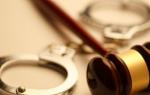 Субъект преступления — признаки и роль в судебных делах