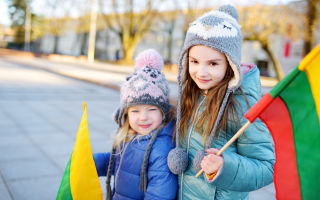 Гражданство литвы для россиян — варианты получения