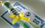 Как получить кредит ип на развитие бизнеса — условия и особенности