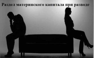 Можно ли разделить материнский капитал после развода