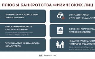 Банкротство гражданина: плюсы и минусы, способы и условия