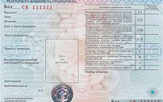 Наказания за шпионаж по статье №276 из ук рф