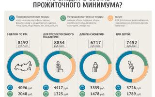 Федеральная социальная доплата к пенсии в россии