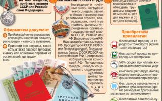 Ветеран труда: как получить в московской области