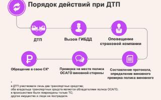 Что делать при ДТП: порядок действий при различных ситуациях