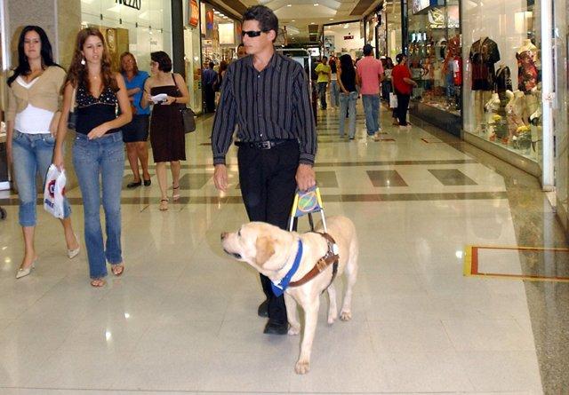 Можно ли по закону заходить с собакой в магазин