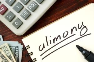 Чем грозит неуплата алиментов и как можно снять с себя обвинения