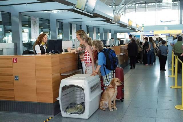 Болгария Шенген - как законно въехать в страну