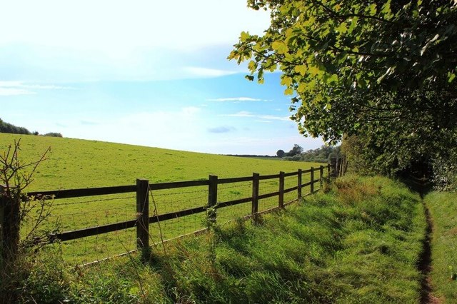 Как определить границы земельного участка - важные правила