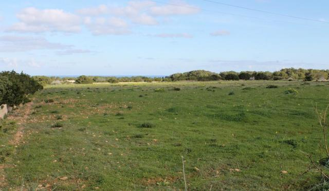 Как оформить землю в собственность: документы и порядок процедуры