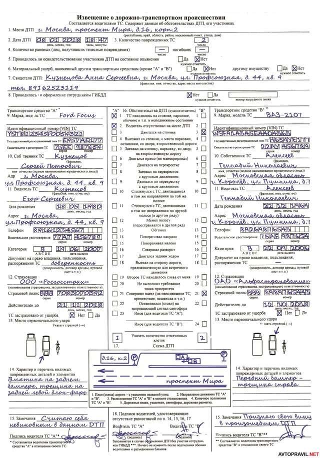 Европротокол: пошаговая инструкция по заполнению