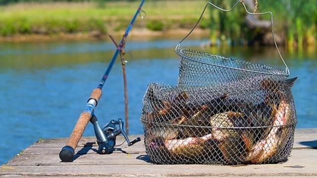 Рыбачить станет сложнее: новые правила любительской рыбалки с 2020 года