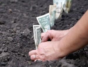 Сколько стоит размежевка земельного участка