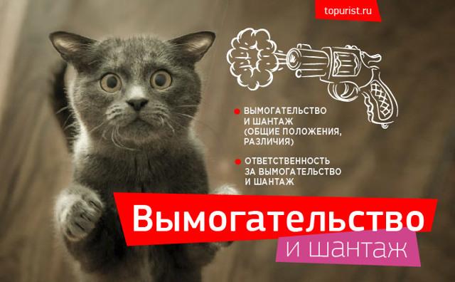 Вымогательство и шантаж: статья УК РФ, наказание, что делать