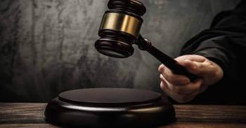 Лесная амнистия: что это такое, как ей воспользоваться, закон