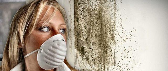 Как провести чистку вентиляции в многоквартирном доме