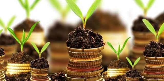Земельный налог в 2020 году: особенности и расчет суммы