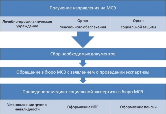 Льготы инвалидам 2 группы в 2020 году в России и регионах