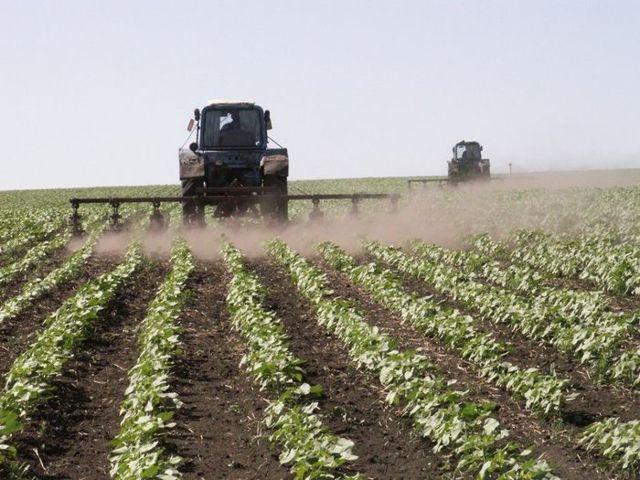 Субсидии для сельского хозяйства в 2020 году на развитие - как получить