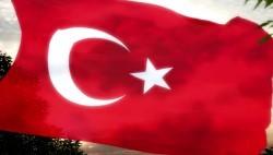 Как получить гражданство Турции: основные варианты и условия