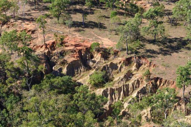 Консервация земель - условия и порядок проведения
