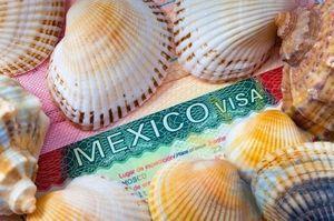 Виза в Мексику для россиян в 2020 году: сроки и стоимость