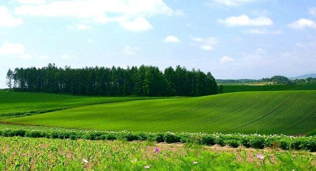 Каков порядок оценки земельного надела и дома
