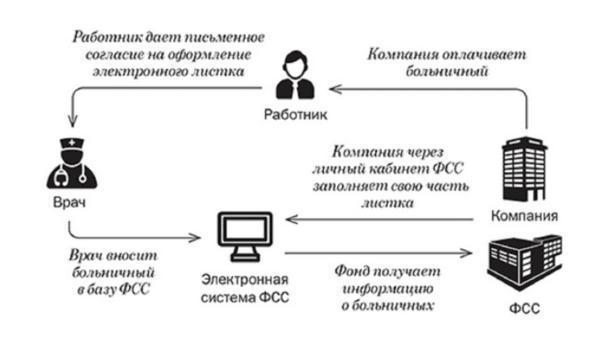 Электронный листок нетрудоспособности в 2020 году: оформление и заполнение