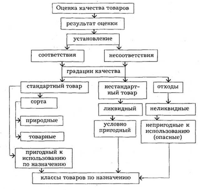 Экспертиза качества товаров: порядок проведения и сроки
