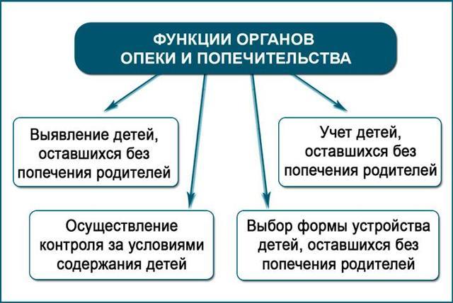 Органы опеки и попечительства: их задачи, полномочия и обязанности