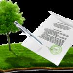 Что такое СНТ ДНП - понятие и основные отличия от ИЖС