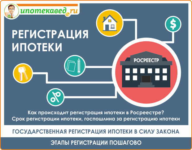 Как купить квартиру в ипотеку: с чего начать и последовательность действий