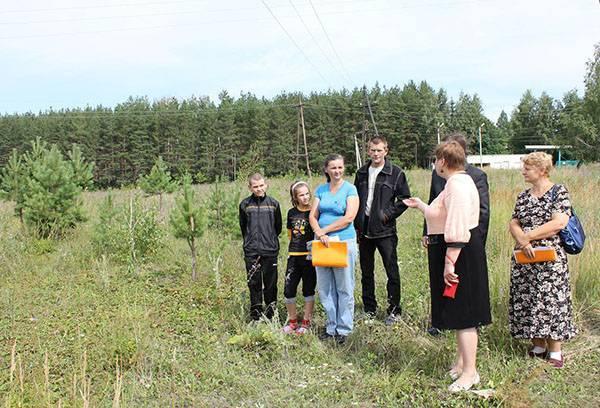 На каких условиях многодетные семьи Красноярска могут получить землю