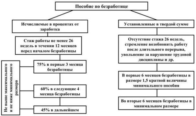 Как получить пособие по безработице: порядок и условия получения